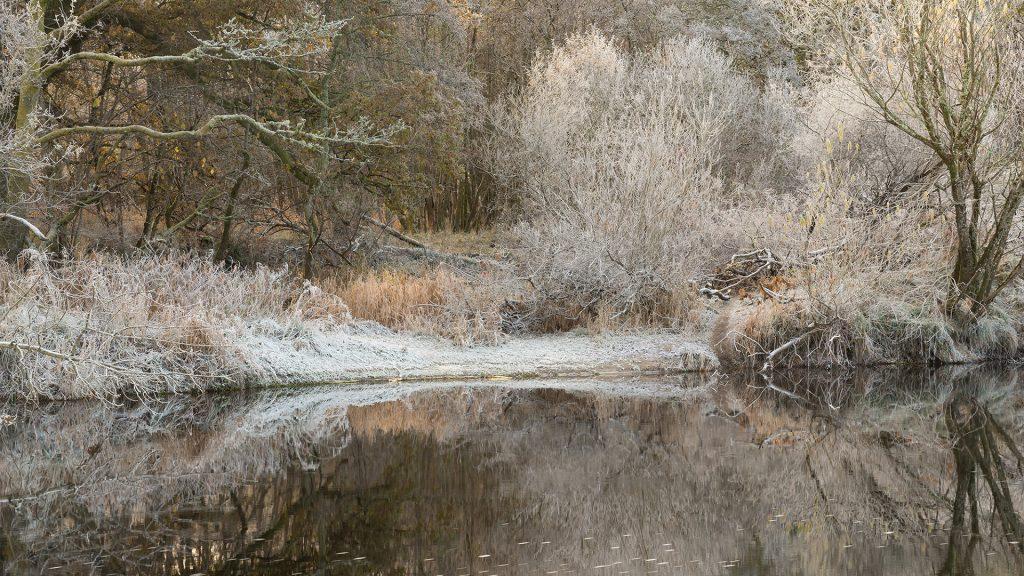 Strathearn Frost