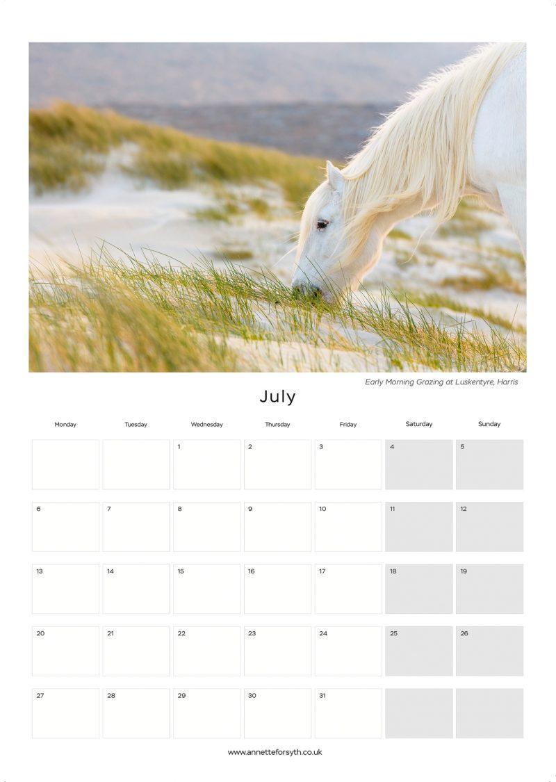 Calendar 2020 Inside July - Annette Forsyth Photography