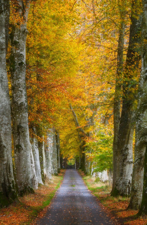 Autumn Twilight, Drummond Castle