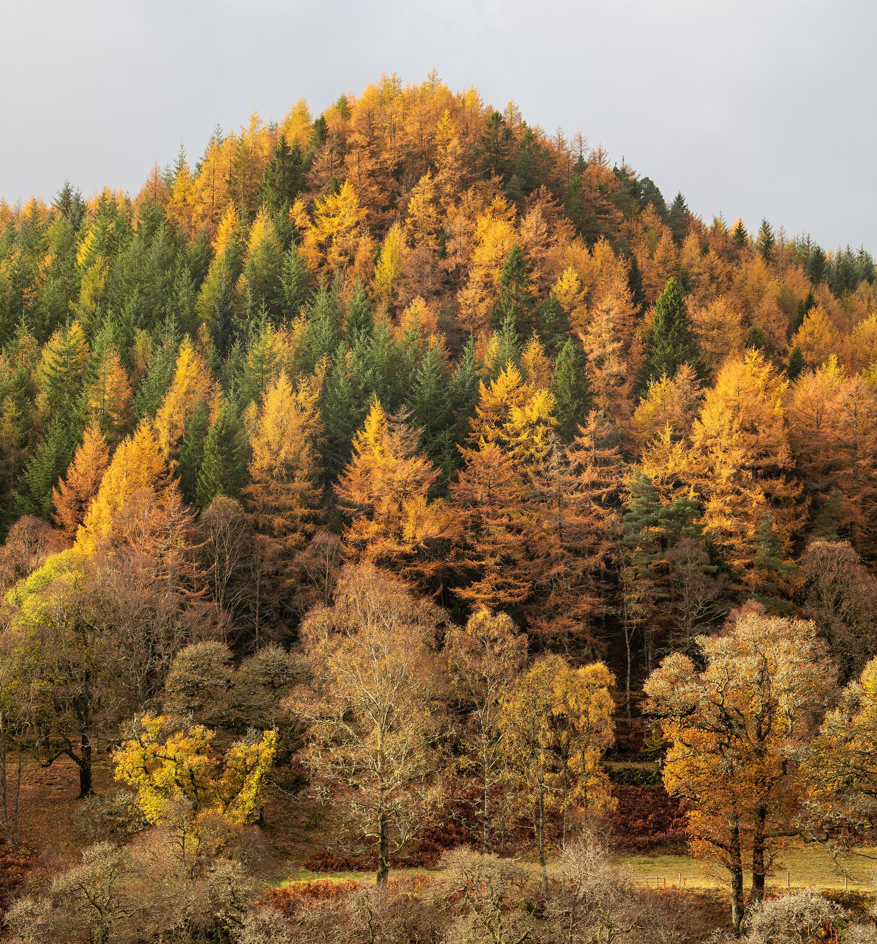 Autumn Peak, Strathearn