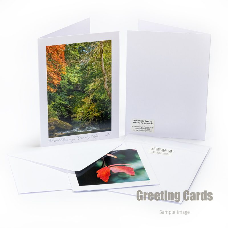 Handmade Greeting Card Sample