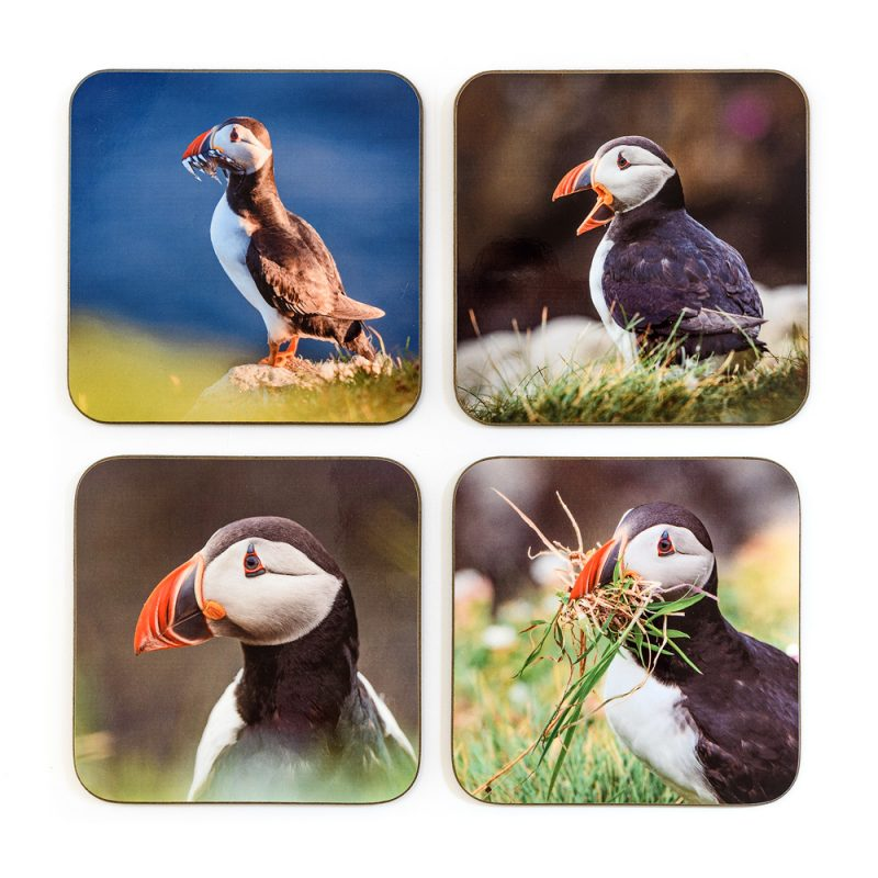 Puffin Coasters