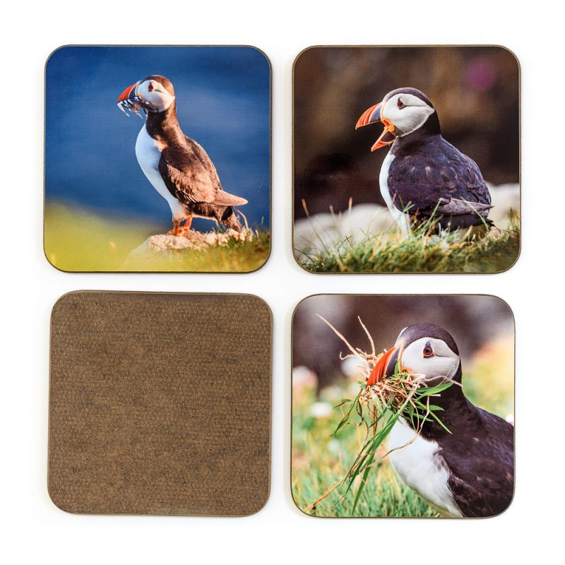 Puffin Coasters - back