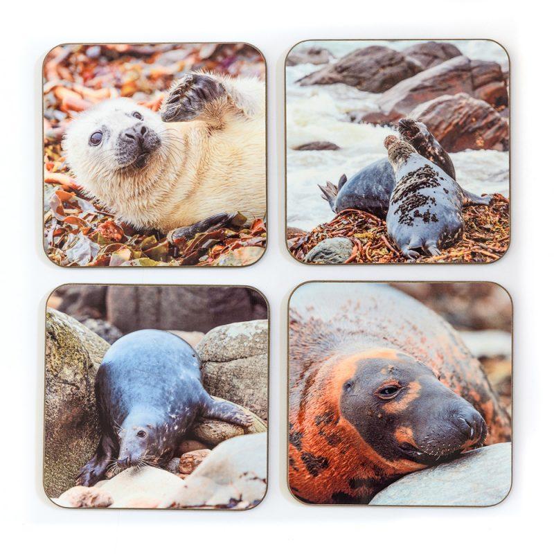 Seals Coasters - Set 1
