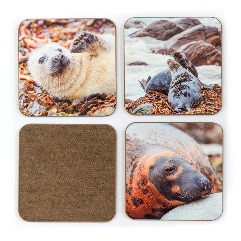 Seals Coasters - Set 1 back