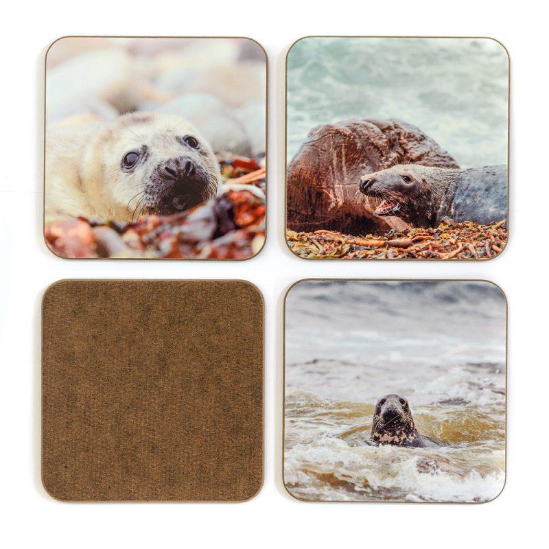 Seals Coasters - Set 2 back