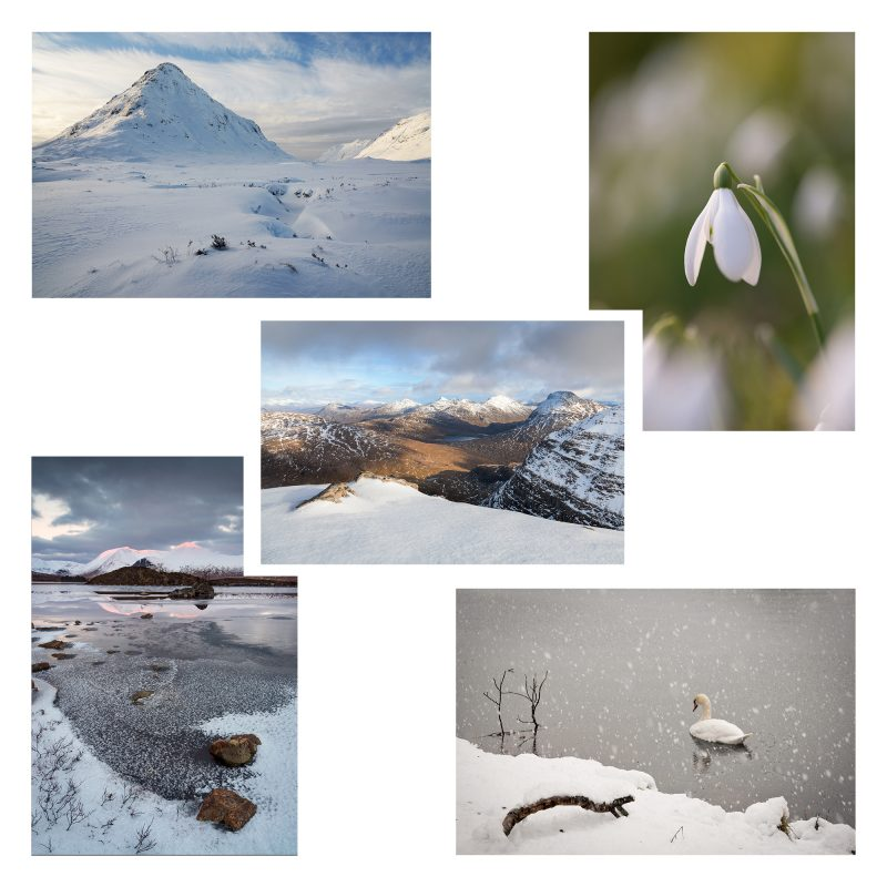 Card Packs Christmas - Winter 2