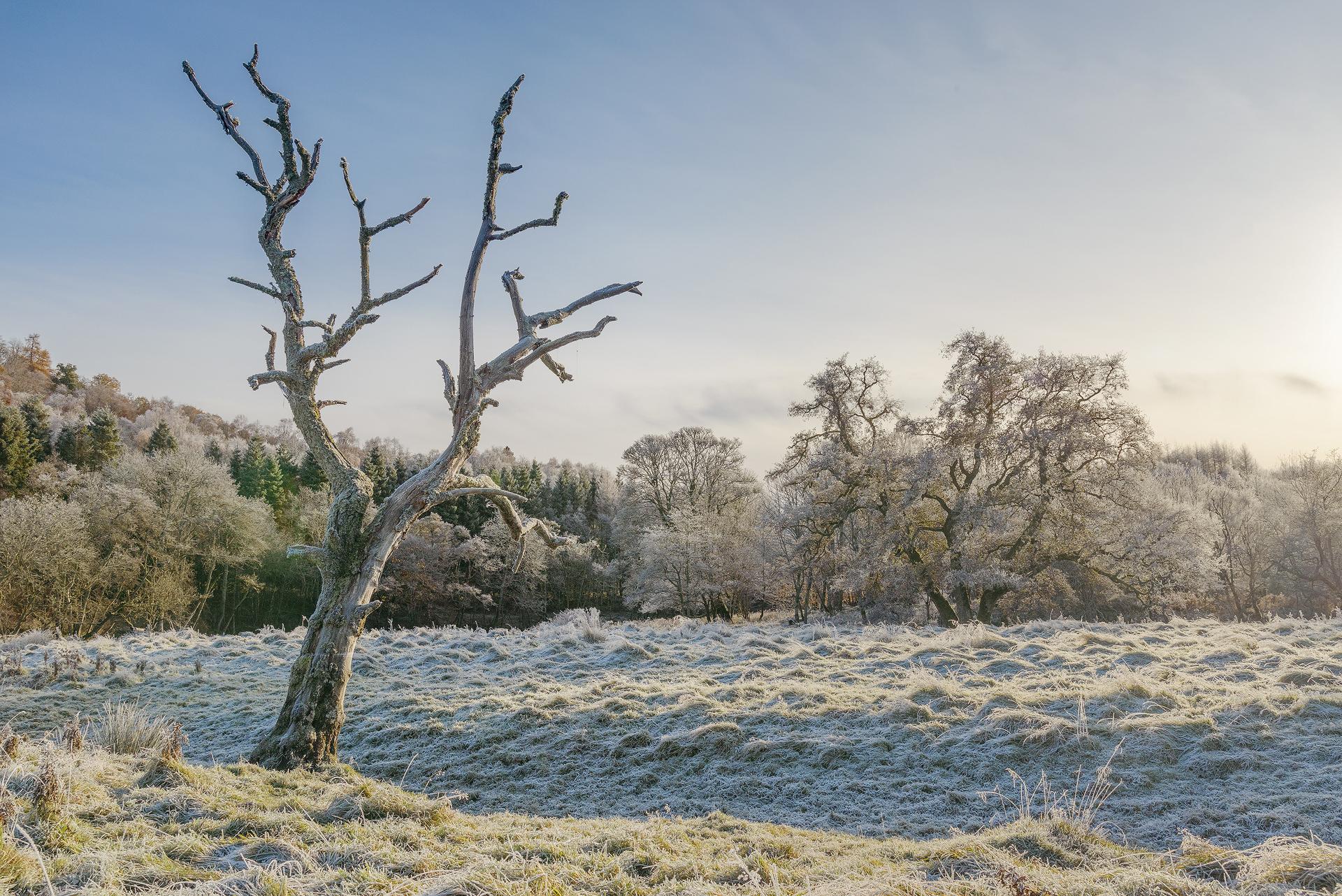 Hoar Frost, Strathearn