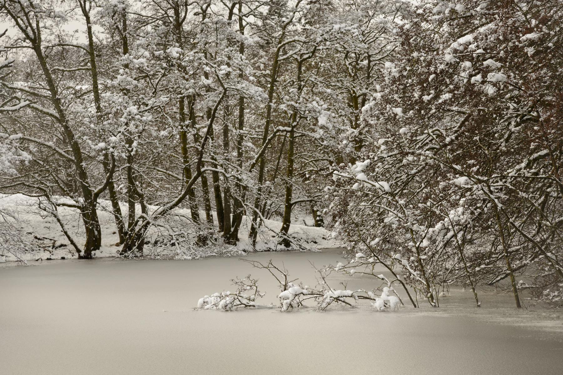 Winter Stillness at Loch Monzievaird