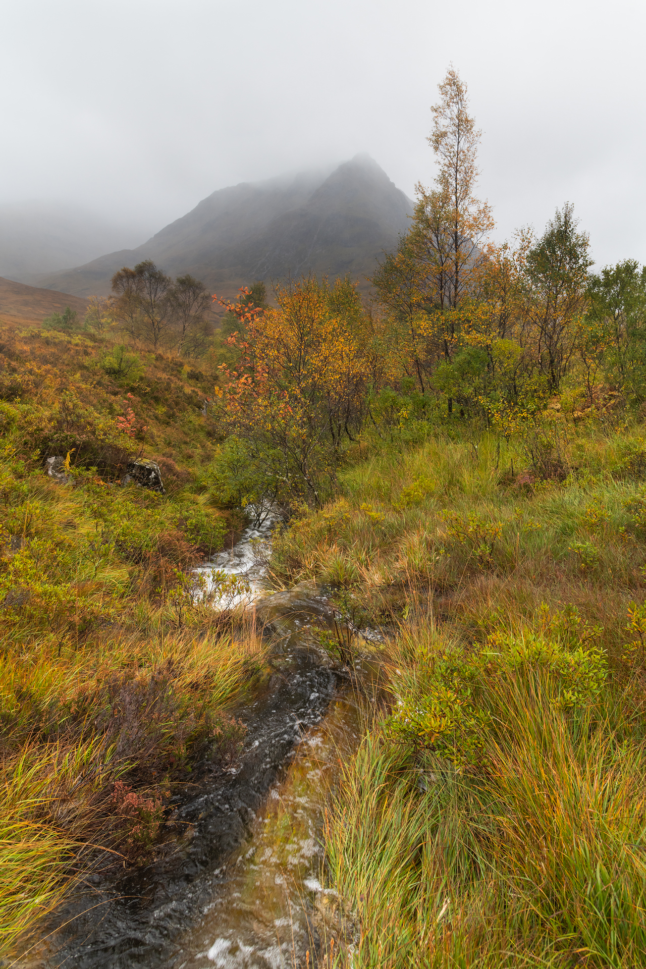Autumn Mood, Glencoe