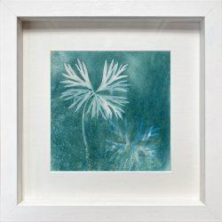 Magical Monkshood leaves- Cyanotype Original