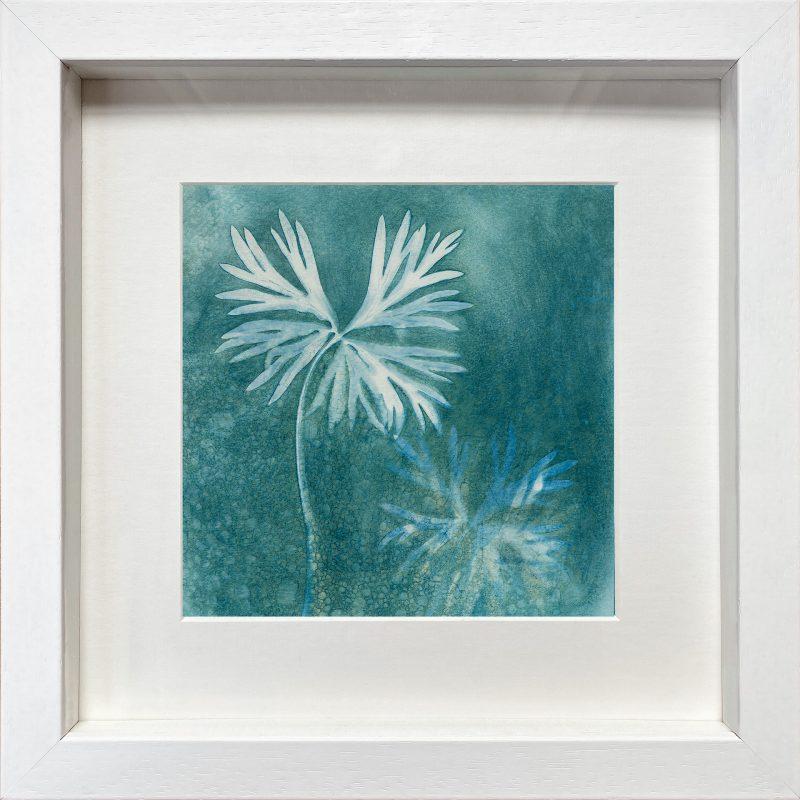 Aconitum napellus - magical Monkshood leaves - frame white