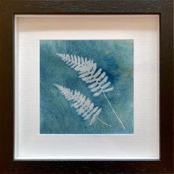 Fern Fronds – Cyanotype Original