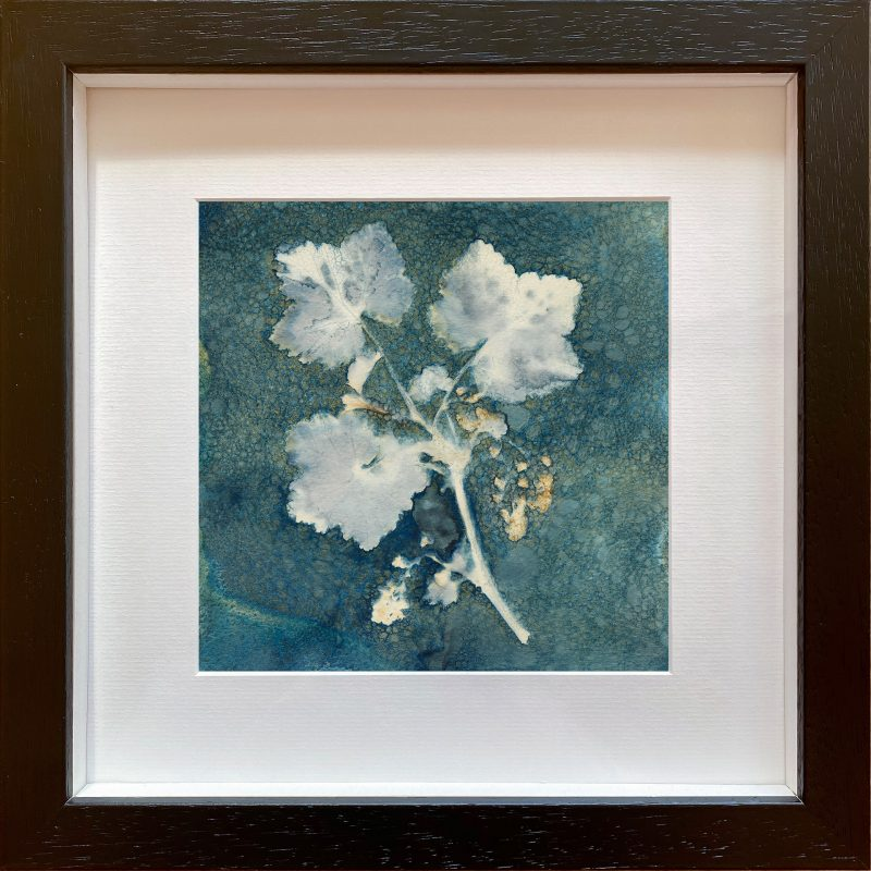 Redcurrant Branch with flowers - frame black