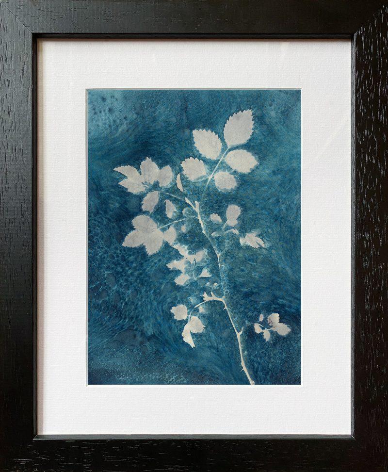 Rose leaves - frame black
