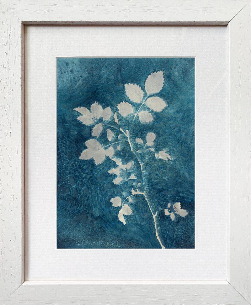 Rose leaves - frame white