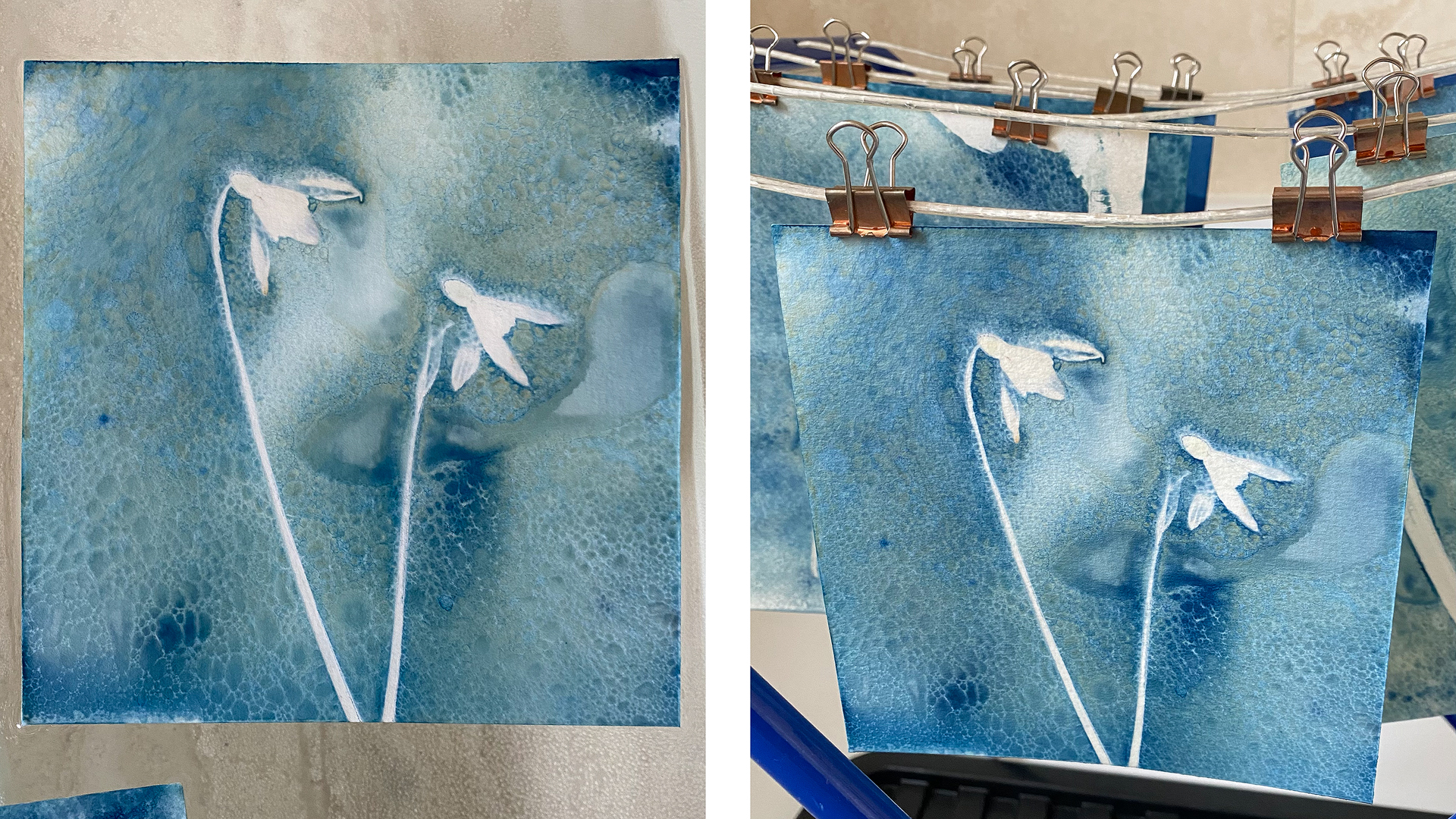 Wet Cyanotype in waterbath and drying